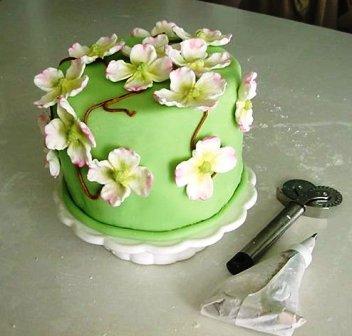cake story, India