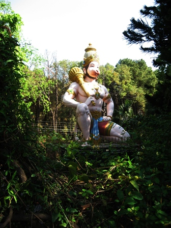 Monkey God, Dharamsala
