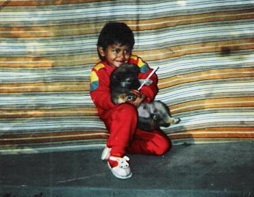 Animal Care, Dharamsala