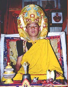 Karmapa Lama in Dharamsala