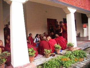 Nunnery at Dharamsala