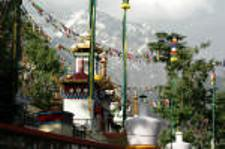 Tibetan tradition in Dharamshala