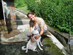 Animal Care Dharamsala