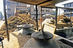 The Art of Attar Making, India