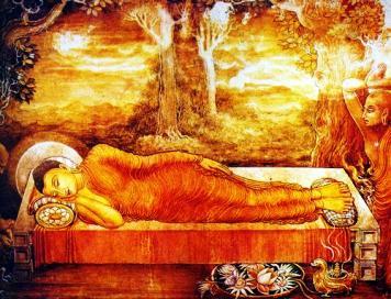 Dharamshala News Alert..Buddha Reincarnation