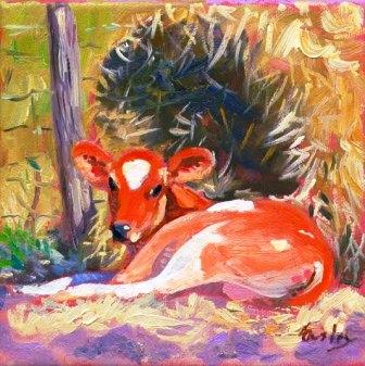 Animal Care Dharamsala