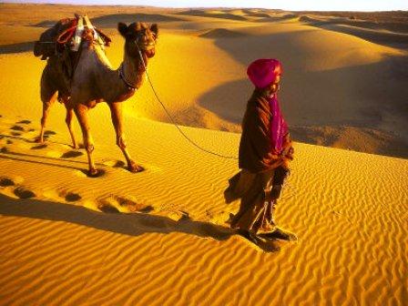 Camel, Ship of Rajasthan, India