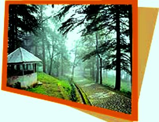 Dharamshala Guide Book