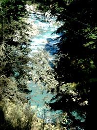 Angling River of Dharamsala