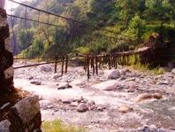 Ecology Dharamsala