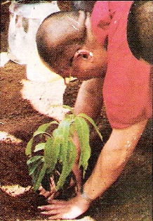 Dalai Lama and Environment