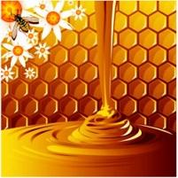 Honey for Prosperity