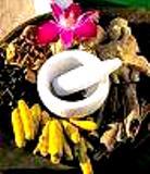 Ancient Healing Herbs of Himalayas