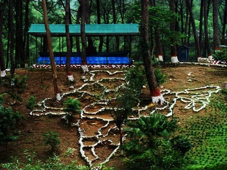 Green India Tours