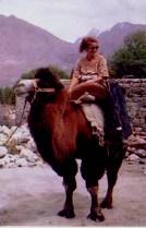Ladakh Camel Safari