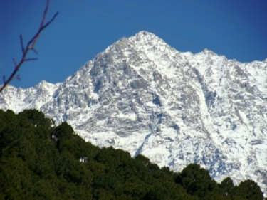 Snow Dharamsala