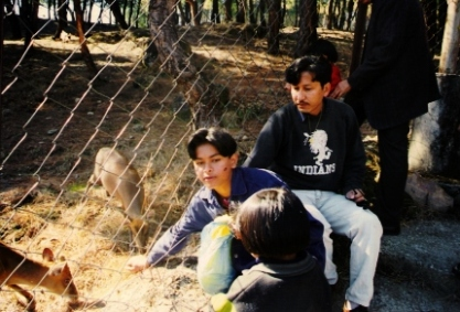 Wild Life Dharamsala