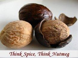 Nutmeg India