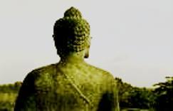 Buddha Peace, Dharamsala