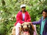 Pony ride in Dharamsala