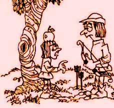 Robin Hood Stories