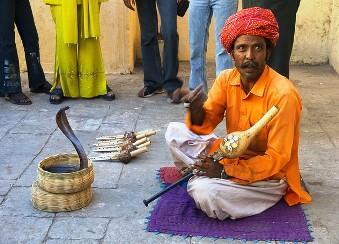 Indian Snake Charmer