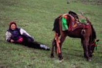 Tibetan Rider