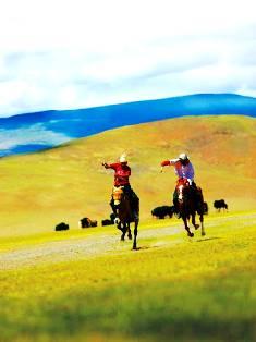 Himalayan Race in Tibet