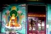 Dharamsala Health n Healing