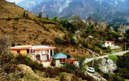 Spring Dharamsala..Home Stay 2010