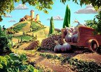Garlic India