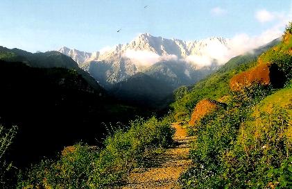 Mountain Nature Walk at Vidya Niwas