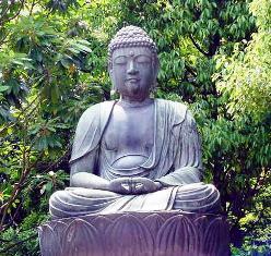 Buddha Tree of Life